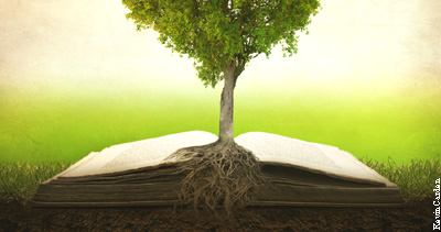 Rooted In God S Word